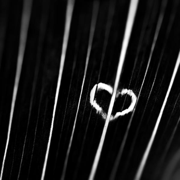 Black Heart by FeliDae84