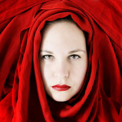 The Rose by FeliDae84