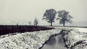 Ein Anflug von Winter