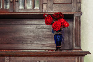 Accento by FeliDae84