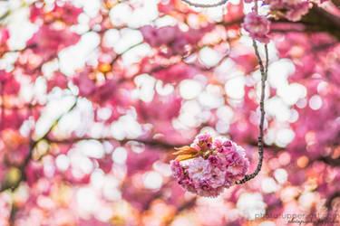 Natuerliche Blumenampel