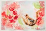 Soave - in watercolor
