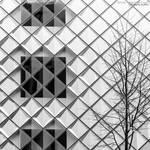 Facets by FeliDae84