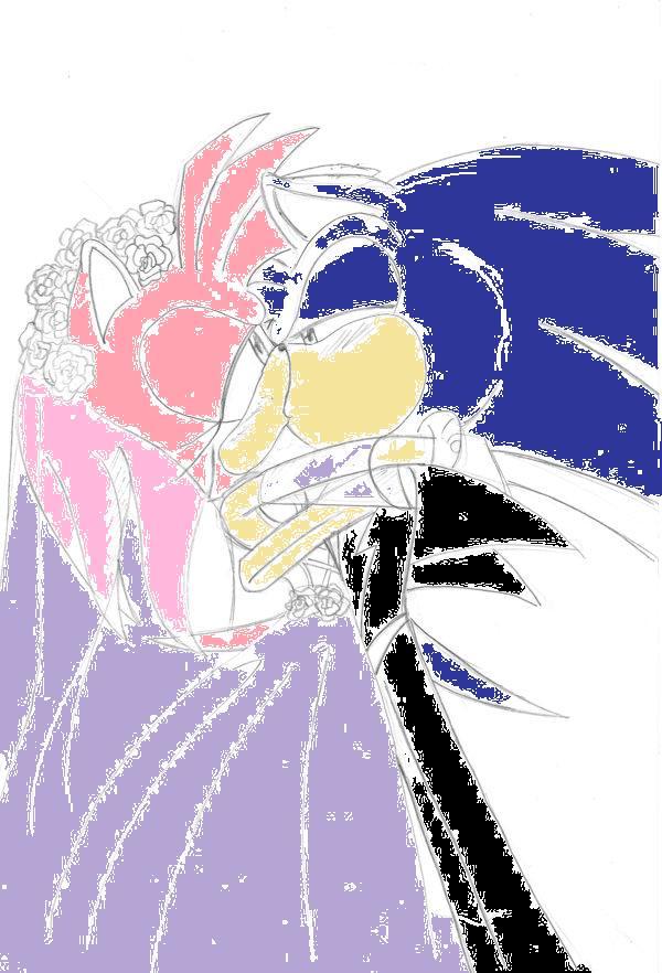 amy and sonic wedding wwwpixsharkcom images