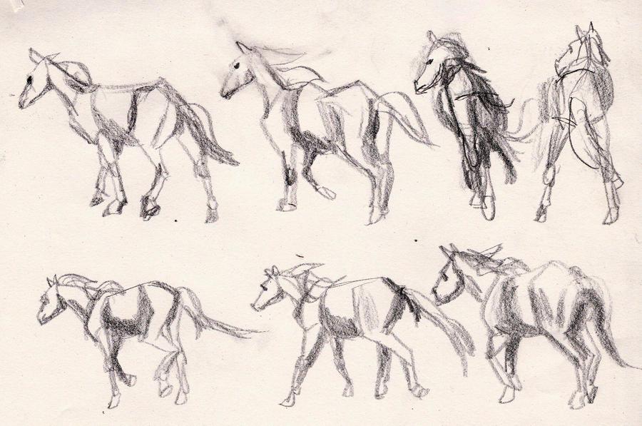 Animal Animation Software Animal Drawing Animation Poses