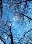 Blue Horizon 1 by AlexisYoko
