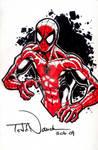 Spider-Man: Tampa Con commish