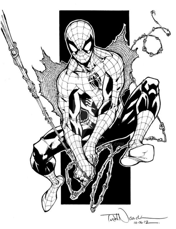 Spider-Man for Hurricane Sandy Relief auction by ToddNauck