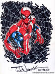 Spider-Man YouTube speed drawing series 2013