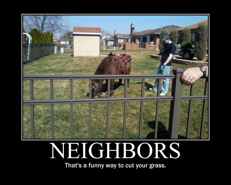 Funny Memes For Neighbors : Neighbors by dask on deviantart