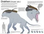 Messy Drakhen Info Sheet