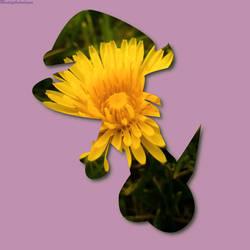 Sunflower Nack by maddythehooligan