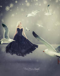 Seagulls and Blonde in Black