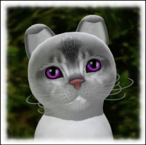 ClovisLuik's Profile Picture