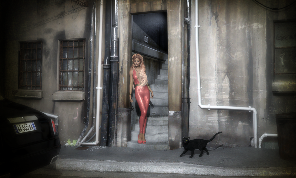 Alley Cats by ClovisLuik