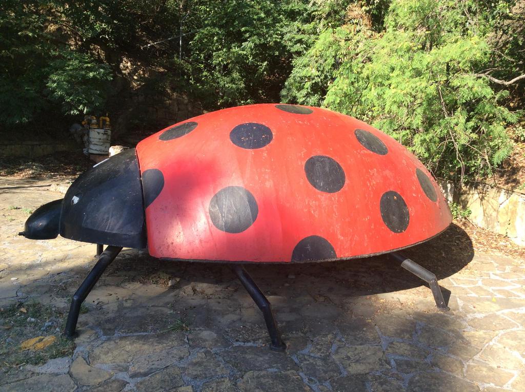 A ladybug by YuiHarunaShinozaki