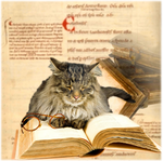 The wizard of the notary