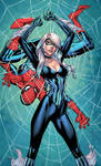Black Cat and Spiderman - Colors