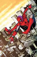 Spiderman by Brianskipper