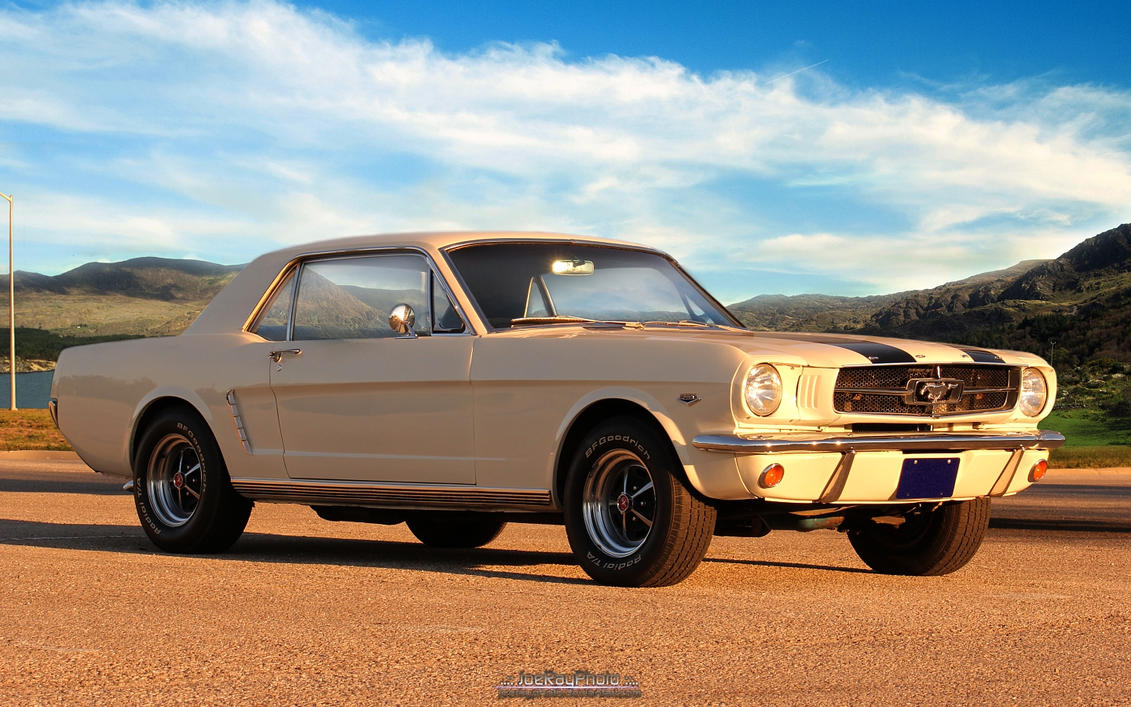 Golden Mustang by joerayphoto
