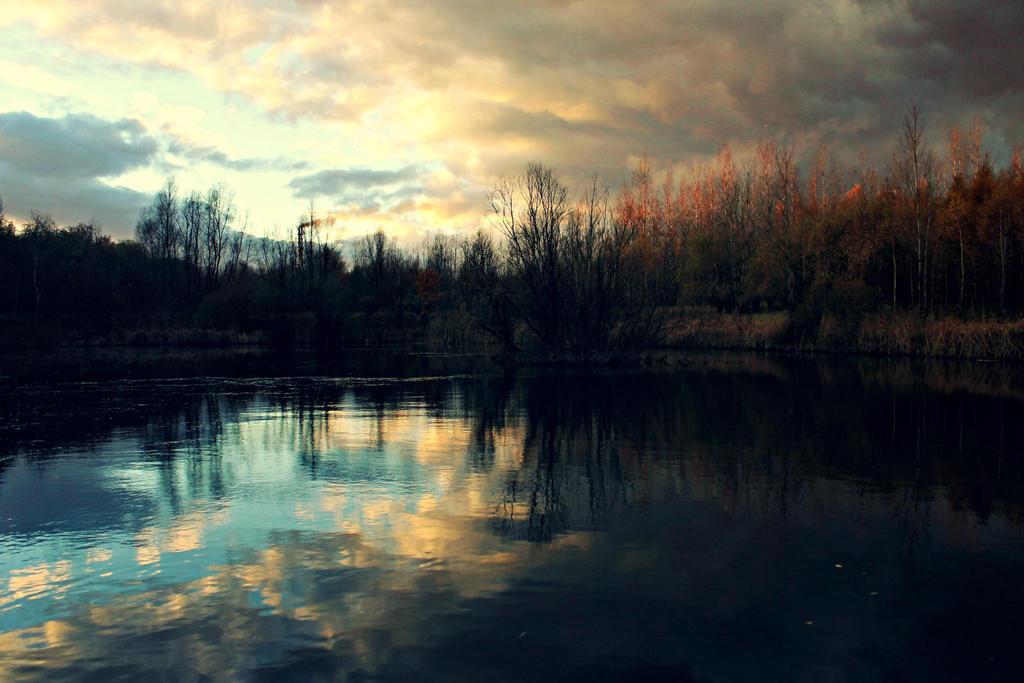 wonderland by xmorsmorde