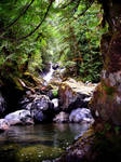 Rosewall Creek Falls by darkjon
