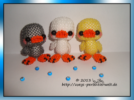 ducks tricolor by Zoey-01