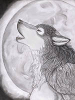 Greet the Moon by TechnicolorDingo