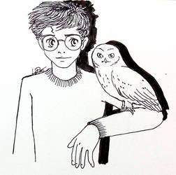 day11 SNOW owl