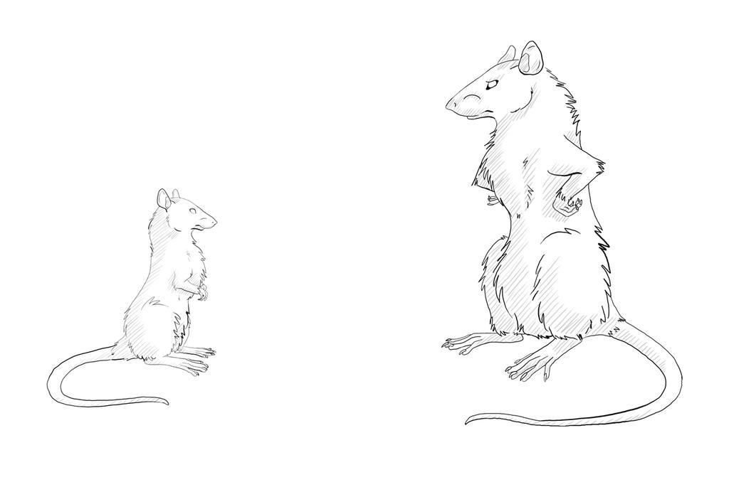 Rats by D-Arlett
