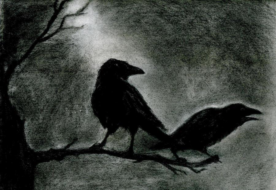 Ravens by liquor-tmx42