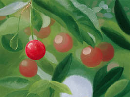 Colorful Cherry