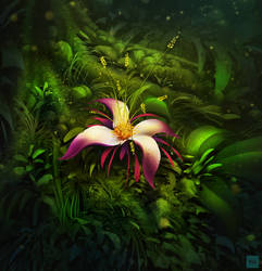 Deep Forest Bloom by IllOO