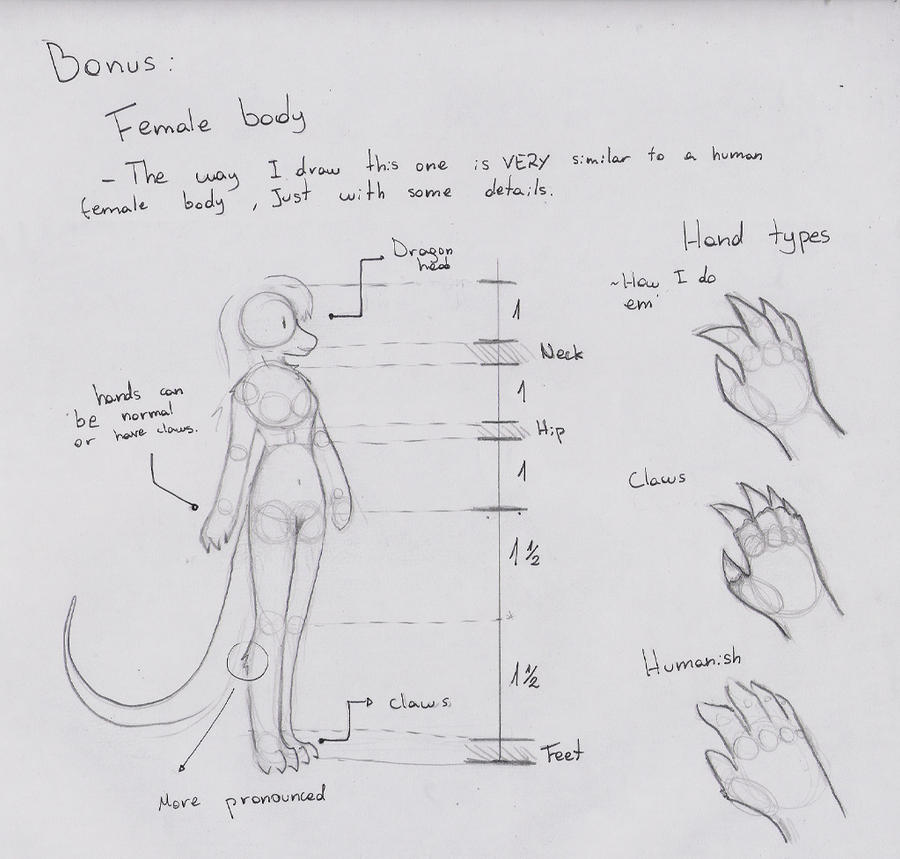 Anthro Dragon Guide: Bonus ~ Female Body and Hands by Dragon-Wish