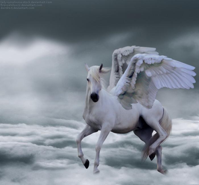Pegasus manip by run-wild