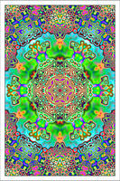 Psychedelic Panda by Wildraw