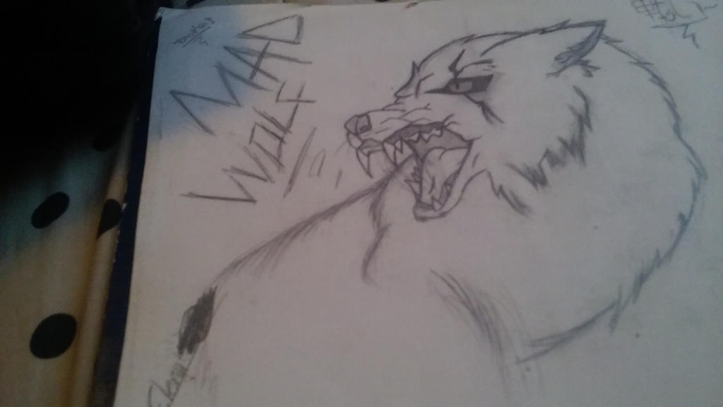 mad wolf drawings - photo #35