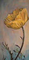 The Yellow Poppy by DoodleWithGlueGun