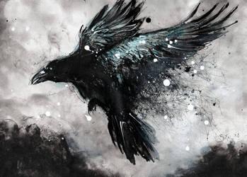 Flying raven