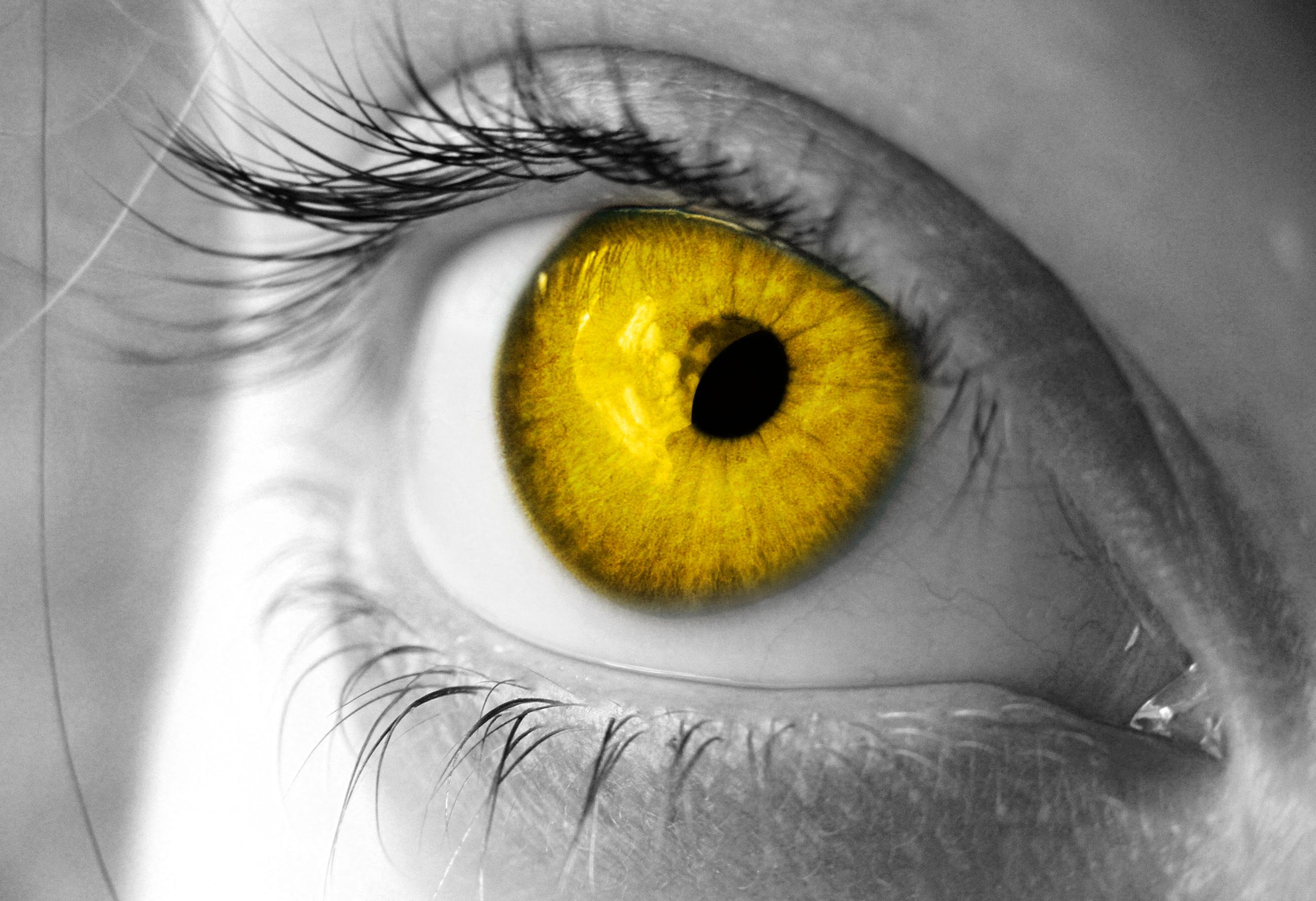 golden eye by grant