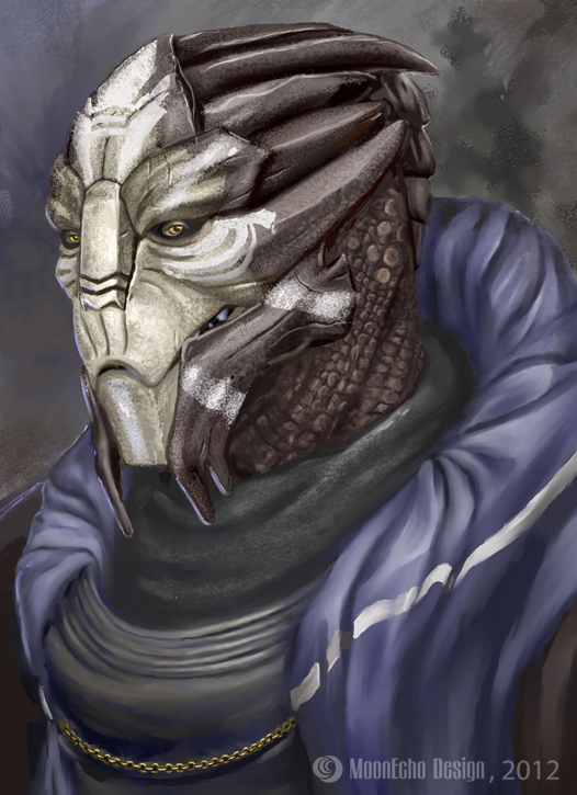 PSW - Random Qui'in-ish Turian Portraiture by MoonEcho
