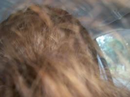 Hair Check by cowgirlscholar