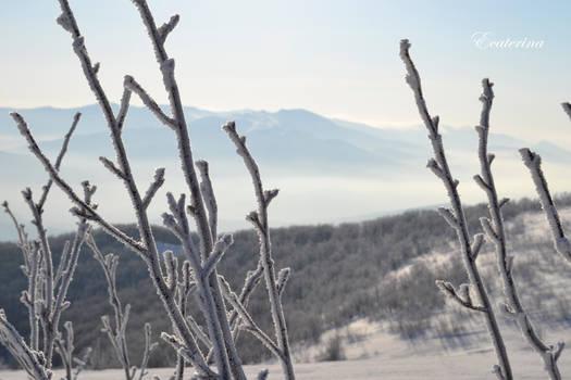 Bieszczady - MARCH 2015 - winter view