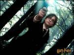 Harry Potter - Expecto Patronum by SasuNaruKoro