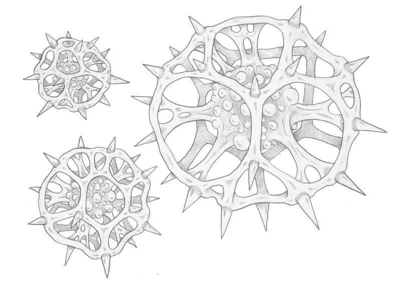 Mortasheen - Avazoth by scythemantis