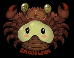 Sacculina by scythemantis