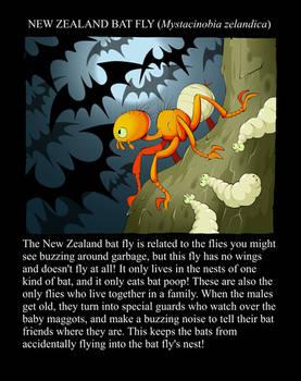 UNBELIEVABLE BUGS: Bat Fly