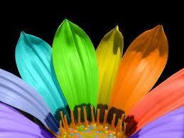 Flower by BestMonkeyInTheWorld