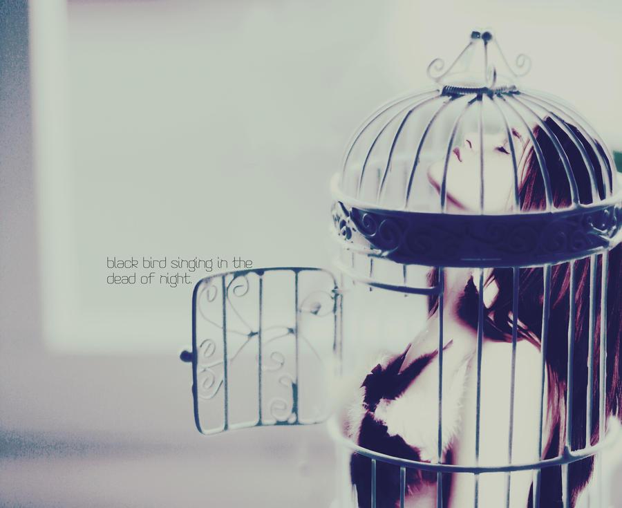 Uncaged through my Voice by xI3rokenI3eautyx