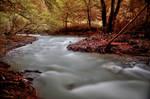 silent creek I
